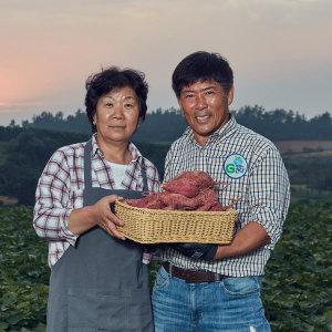 [GFresh] 영암 꿀달고구마 무농약 3kg(긴특긴상) 30년고구마재배